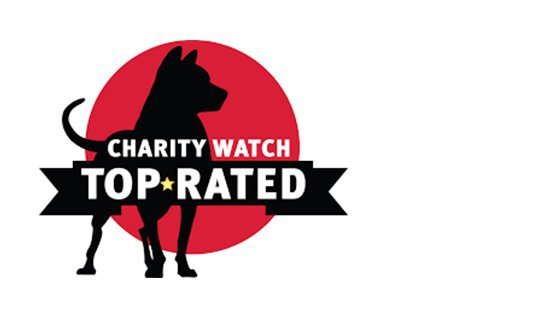 Logo-Charity Watch